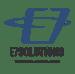 E7 Solutions